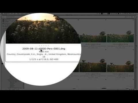 Digital Archiving Workflow for Beginners