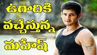 Good news to mahesh babu fans for ugadi - first look of mahesh#23 || a r murugadas || desiplazatv