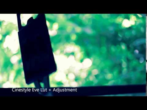 Film and Photography by F G : Cinestyle vs Neutral picture style for