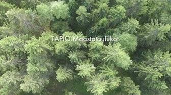 TAPIO Maastotaulukot   Metsänhoidon suositukset ja metsäsertifioinnin ympäristövaatimukset mobiilist