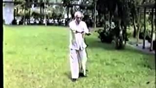 Repeat youtube video 李先朱家螳螂三步戰與九步戰
