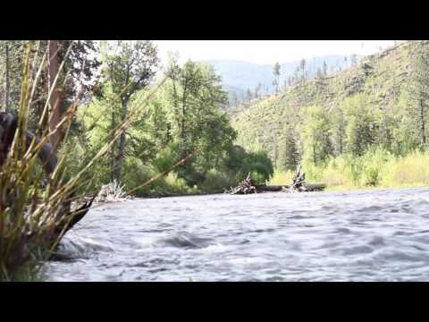 [10 Hours] Fish Creek State Park, Montana - Video & Soundscape [1080HD] SlowTV