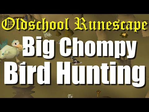 OSRS Big Chompy Bird Hunting Quest Guide