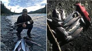 "Аляска часть 4. Рыбалка на реке ""русской"". Нерка или Sockeye salmon."