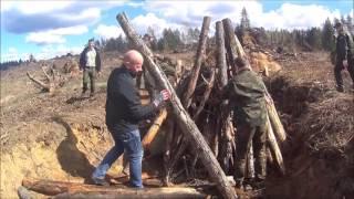 Martwe drewno - akcja z 7 kwietnia 2017