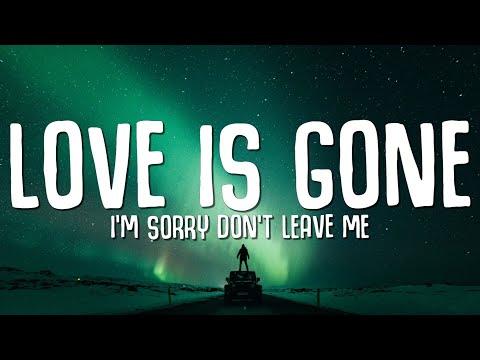 """SLANDER - Love is Gone (Lyrics) ft. Dylan Matthew (Acoustic) """"I'm sorry don't leave me"""""""