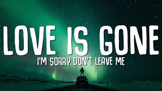 "SLANDER - Love is Gone (Lyrics) ft. Dylan Matthew (Acoustic) ""I'm sorry don't leave me"""