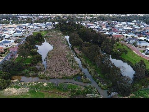 Careniup Swamp Reserve Management Plan Draft video