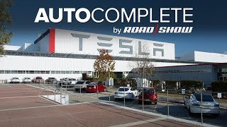 AutoComplete: Tesla could lose its image as an EV leader, says consultant thumbnail