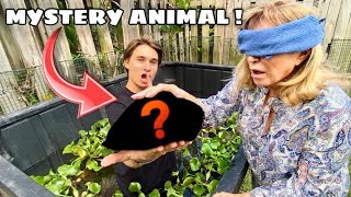 SURPRISING My GRANDMA WITH NEW MYSTERY PET ! WHAT IS IT ?!