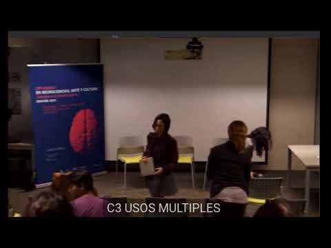 Diplomado Neurociencias-Neurodanza