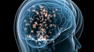 El poder de la mente - Inteligencia - Documental