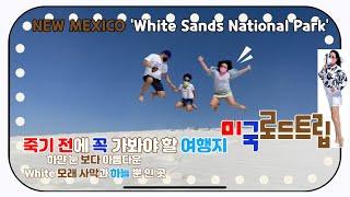 [미국여행]가족로드트립 'White Sand Natio…