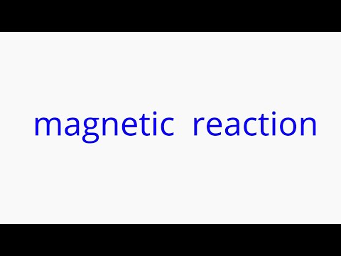 Magnetic Reaction