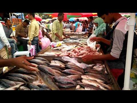 Nanapeth Pune fish market