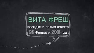 26.02.2018 Полив и посадка салата