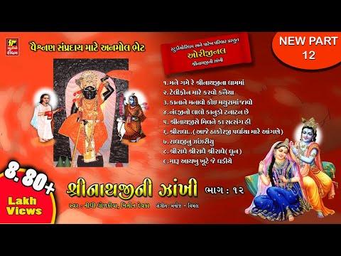 SHRINATHJI NI ZANKHI PART-12 II श्री नाथजी सतसंग  पार्ट १२