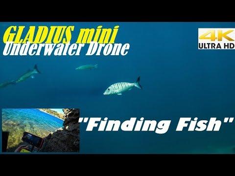 🎮 Gladius Mini Underwater Drone Part 3/3🐟Finding Fish  Spearfishing Life 🇬🇷 [4Κ]✅
