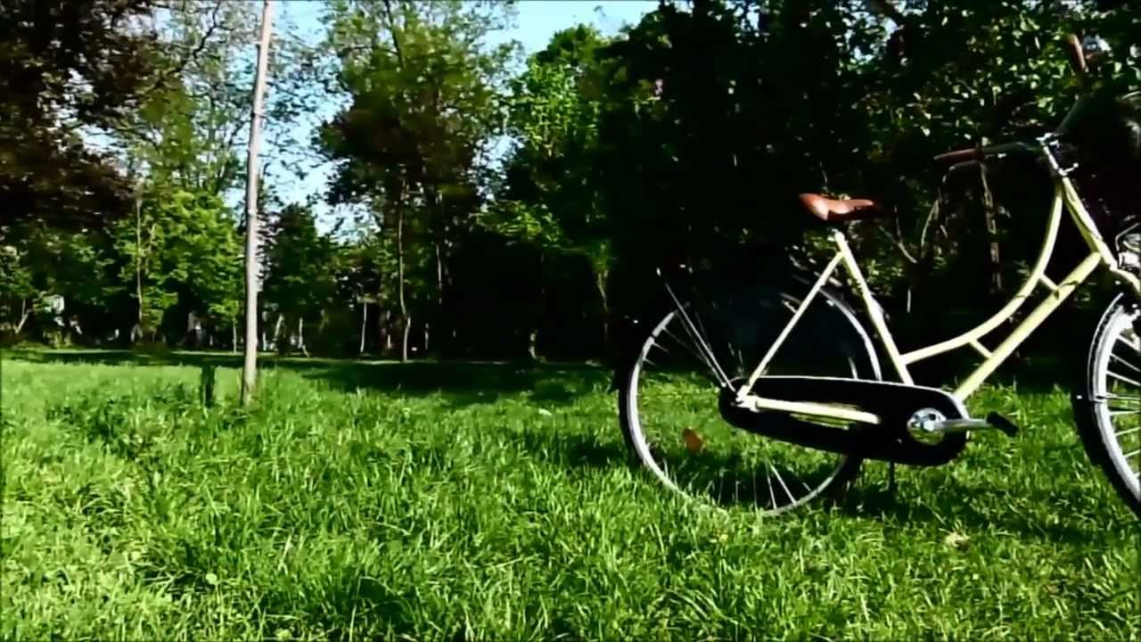 281eb07ae Mestský bicykel DHS Citadinne 2632 26'' - model 2017 - inSPORTline