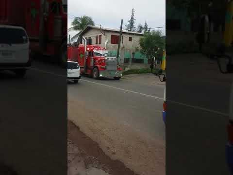 Cash money machine jamaica truckers gone wild