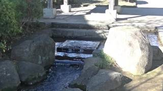 mizu水WATER見沼代親水公園4 thumbnail