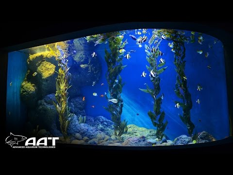 AAT - Acrylic Panels Supplied & Installed at Cube Oceanarium
