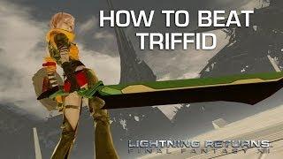 Lightning Returns: Final Fantasy 13 - Triffid Gameplay