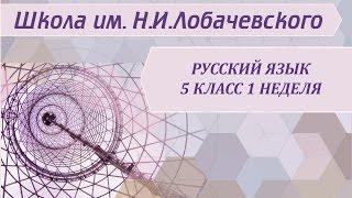 Русский язык 5 класс 1 неделя