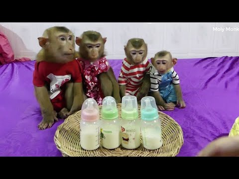 Obedient Dodo Mori Donal And Moly Sitting Wait Mom Mixed Milk