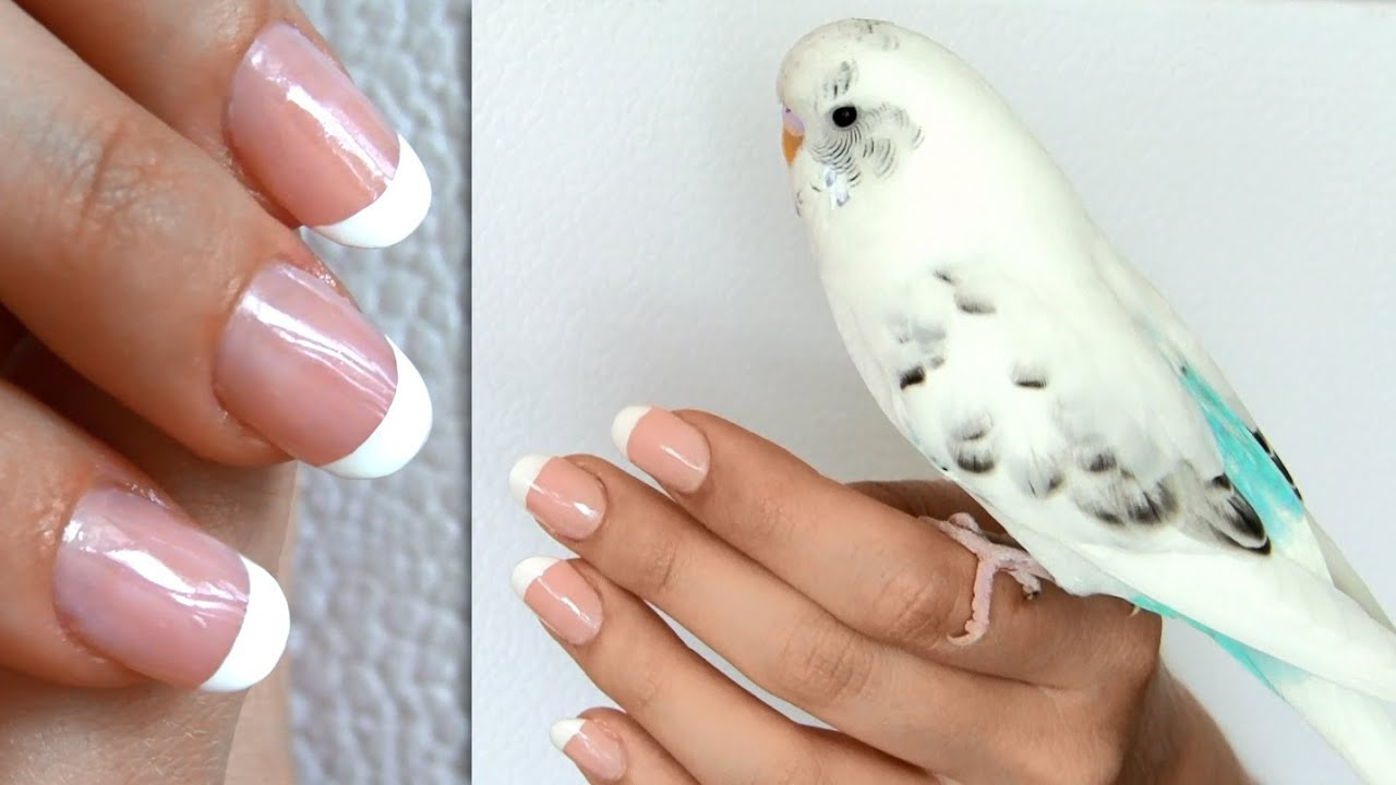 At home french manicure french manicure at home without tape or stickers diy nail solutioingenieria Gallery