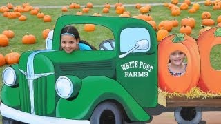 Long Island Fall Festival - Enjoy White Post farms Farm Festival in Long Island