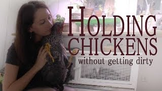 Chickens As Pets: Holding a trained chicken without getting dirty