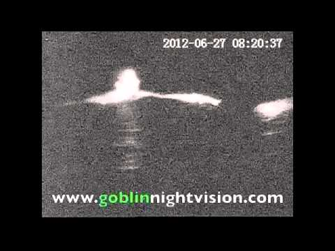 Digital night vision search and rescue video.