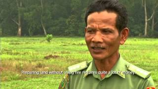 REDD+ Indonesia Moving Beyond Carbon