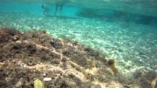 Chorvatsko 2013 - Pisak,Omiš, underwater video - JardaSlatiňany