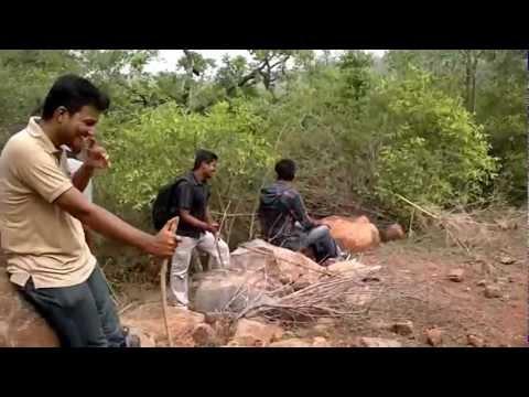 Yercaud Hill Trekking (Tamilnadu, India).wmv