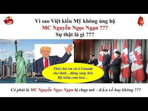 Vì Sao VIỆT KIỀU MỸ Không ủng Hộ MC Nguyễn Ngọc Ngạn ? Sự Thật Là Gì ?