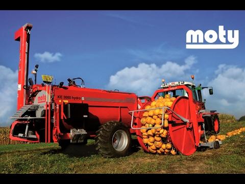 MOTY - Technologie à La Pointe Pour La Récolte Des Graines De Courges