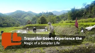 The Magic of a Simpler Life with Rice thumbnail