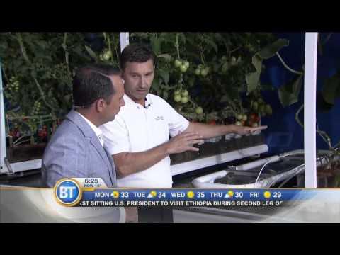 Nature Fresh Farms mobile greenhouse