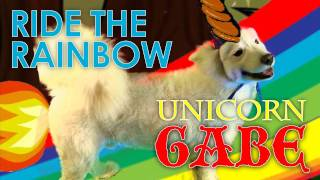 Ride the Rainbow by Unicorn Gabe the Samoyed