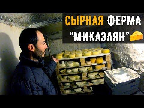 Бизнес в Армянской деревне / Сыроварня