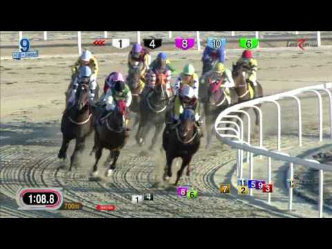 Final Boss - Seoul Racecourse - Jan 15, 2017