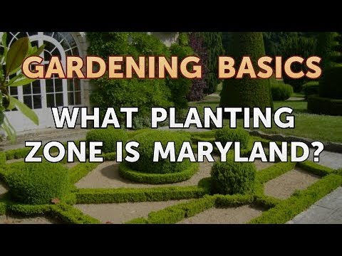 What Planting Zone Is Maryland
