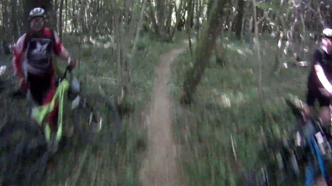 Bois De La Saulx singletrack de la bik'saulx