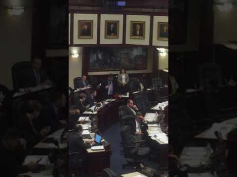Florida House of Representatives  2017