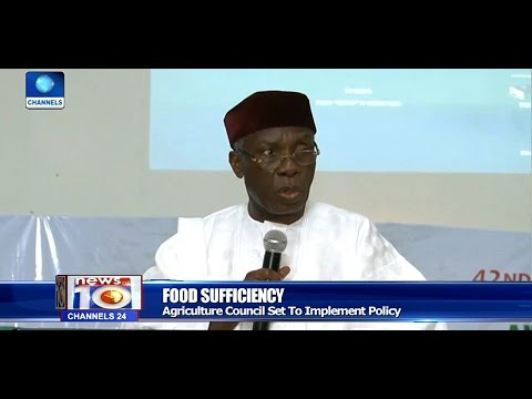 Rice Importation Will End By 2018   Audu Ogbeh