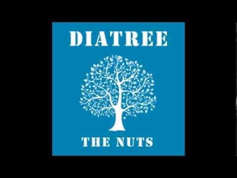 다이아트리(Diatree) & 더넛츠(The Nuts) - 눈물이 주르륵