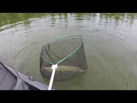 Northland Fishing Tackle Raw Muskie Video