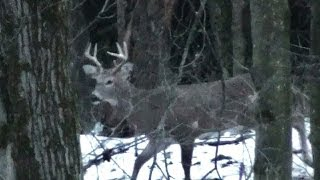 Rifle Buck Season Deer Hunting 2013 Opening Day - John